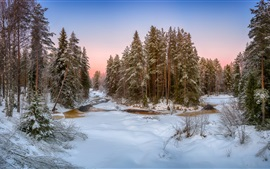 Preview wallpaper Winter, snow, forest, trees, river, dusk