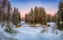 Invierno, nieve, bosque, árboles, río, anochecer