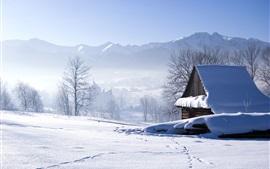 Aperçu fond d'écran Hiver, neige, maison, arbres, brouillard, matin
