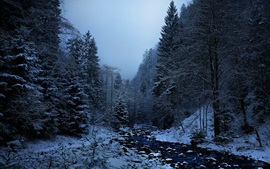 Preview wallpaper Winter, snow, trees, creek, dusk