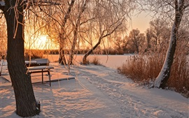 Winter, snow, trees, river, bench, sunrise