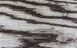 Preview wallpaper Wood texture background