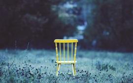 Yellow chair, grass