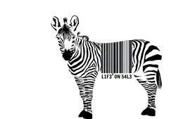Preview wallpaper Zebra, barcode, white background
