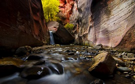 Preview wallpaper Zion National Park, canyon, stream, rocks, trees, Utah, USA