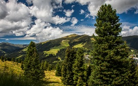 Preview wallpaper Austria, meadows, mountains, trees, clouds, summer