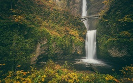 Preview wallpaper Columbia River Gorge, Multnomah falls, Benson Bridge, autumn