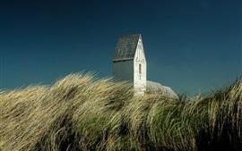 Dinamarca, hierba, edificio, cielo