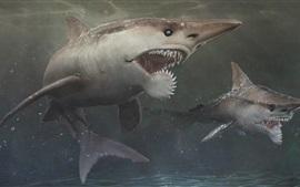 Profundidad, dos tiburones, dientes