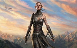 Preview wallpaper Divinity: Original Sin 2, elf girl, warrior