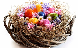 Preview wallpaper Easter, colorful eggs, flowers, nest, white background