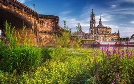 Germany, Dresden, city, grass, river, boats, bridge