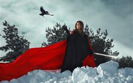 Girl, sword, bird, snow