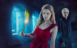 Preview wallpaper Harry Potter, Hermione Granger, Draco Malfoy