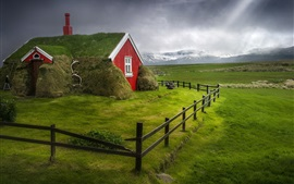 Iceland, house, green grass, fence