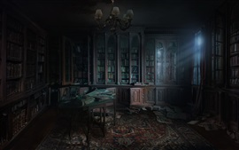 Библиотека, книги, окно, свет, тьма