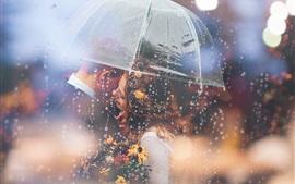 Amantes, paraguas, lluvioso, romántico