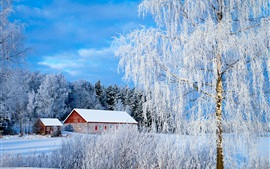 Preview wallpaper Paimio, Finland, trees, snow, house, winter
