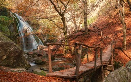 Park, bridge, waterfall, path, red leaves, autumn