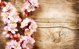 Pink peach flowers, wood board