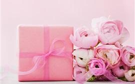 Roses roses, cadeau, ruban