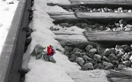 Railroad, snow, red rose, frost