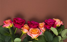 Preview wallpaper Red and orange roses, wall background