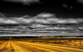 Road, fields, black clouds, dusk