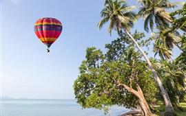 空、熱気球、ヤシの木、ビーチ、海、夏
