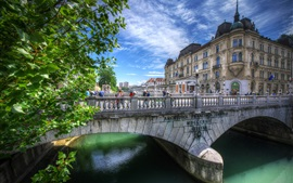 Slovenia, Ljubljana, river, bridge, city