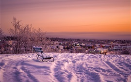 Snow, bench, dusk, winter