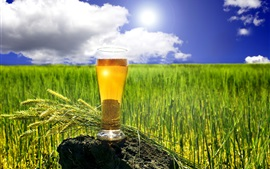 Preview wallpaper Summer, beer, cup, wheat field