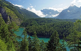 Tirol, Austria, mountains, trees, forest, river