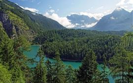 Aperçu fond d'écran Tirol, Autriche, montagnes, arbres, forêt, rivière