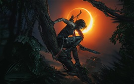 Preview wallpaper Tomb Raider, Lara Croft, shadow, night, moon