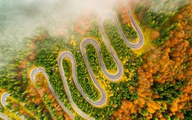 Preview wallpaper Winding road, trees, fog, morning, autumn, from top view