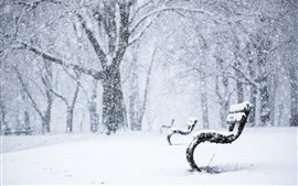 Preview wallpaper Winter park, snow, bench, trees, snowy