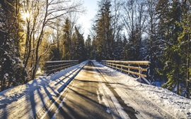 Preview wallpaper Winter, snow, road, fence, trees