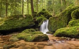 Baden-Wurttemberg, Alemania, rocas, musgo, cascada