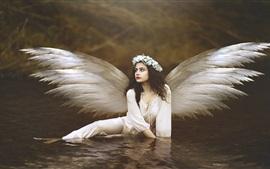 Aperçu fond d'écran Belle fille ange, ailes, eau
