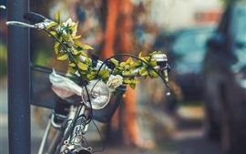 Vue de face de vélo, panier, lampe, fleurs, feuilles