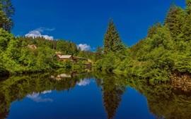 Floresta Negra, lago, casas, Alemanha, Baden-Wurttemberg