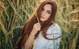 Garota de cabelo castanho, campo de trigo