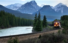 Preview wallpaper Canada, mountains, train, trees