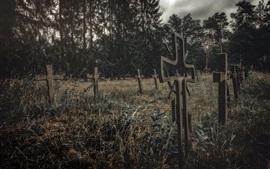Cementerio, cruces, hierba