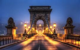 Noite da cidade, ponte, luzes