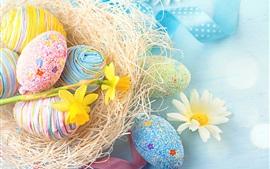 壁紙のプレビュー カラフルな卵、水仙、デイジー、イースター
