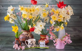 Preview wallpaper Daffodils, hyacinths, cups