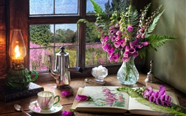 Digitalis, pink flowers, book, lamp, window