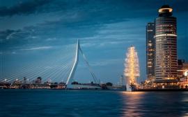 Erasmus Bridge, Rotterdam, Holanda, noite, rio, iluminação
